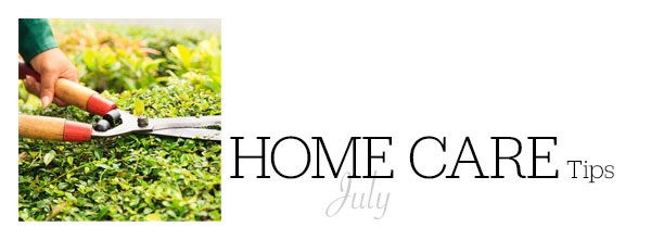 Home Care July 2017
